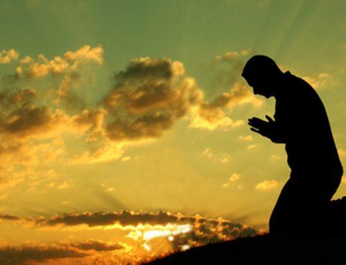 Die ständige Verleugnung deines eigenen Willens macht dich geistlich